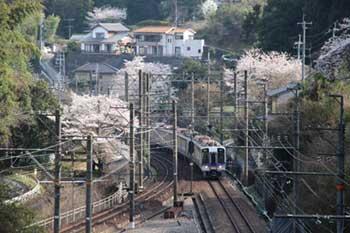 紀見トンネルに入る電車