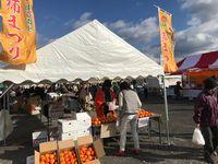 黒石りんご市で柿を販売