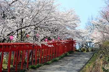 隅田丸高稲荷神社