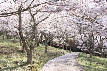 恋野稲荷山