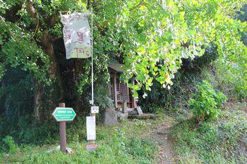 定福寺のすぐ上から山道に入ります