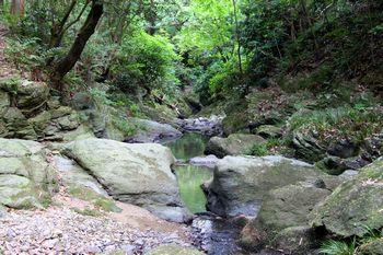 落合川まで降りると飛び越え石が現れます